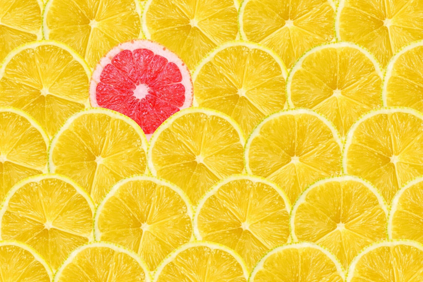 Picture of Lemon slices